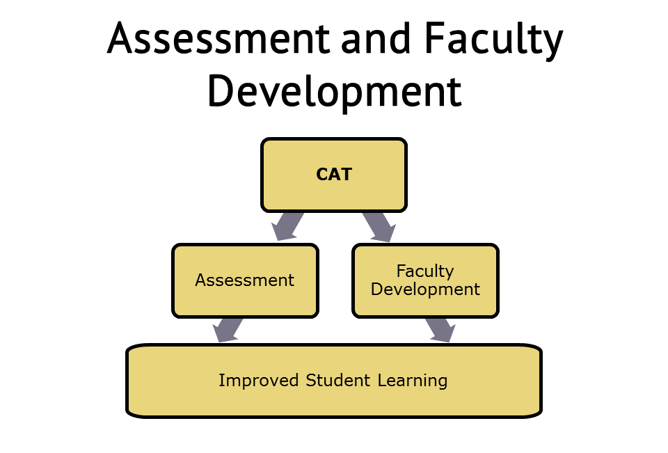 CAT Assessment diagram
