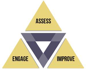 Assess Engage Improve