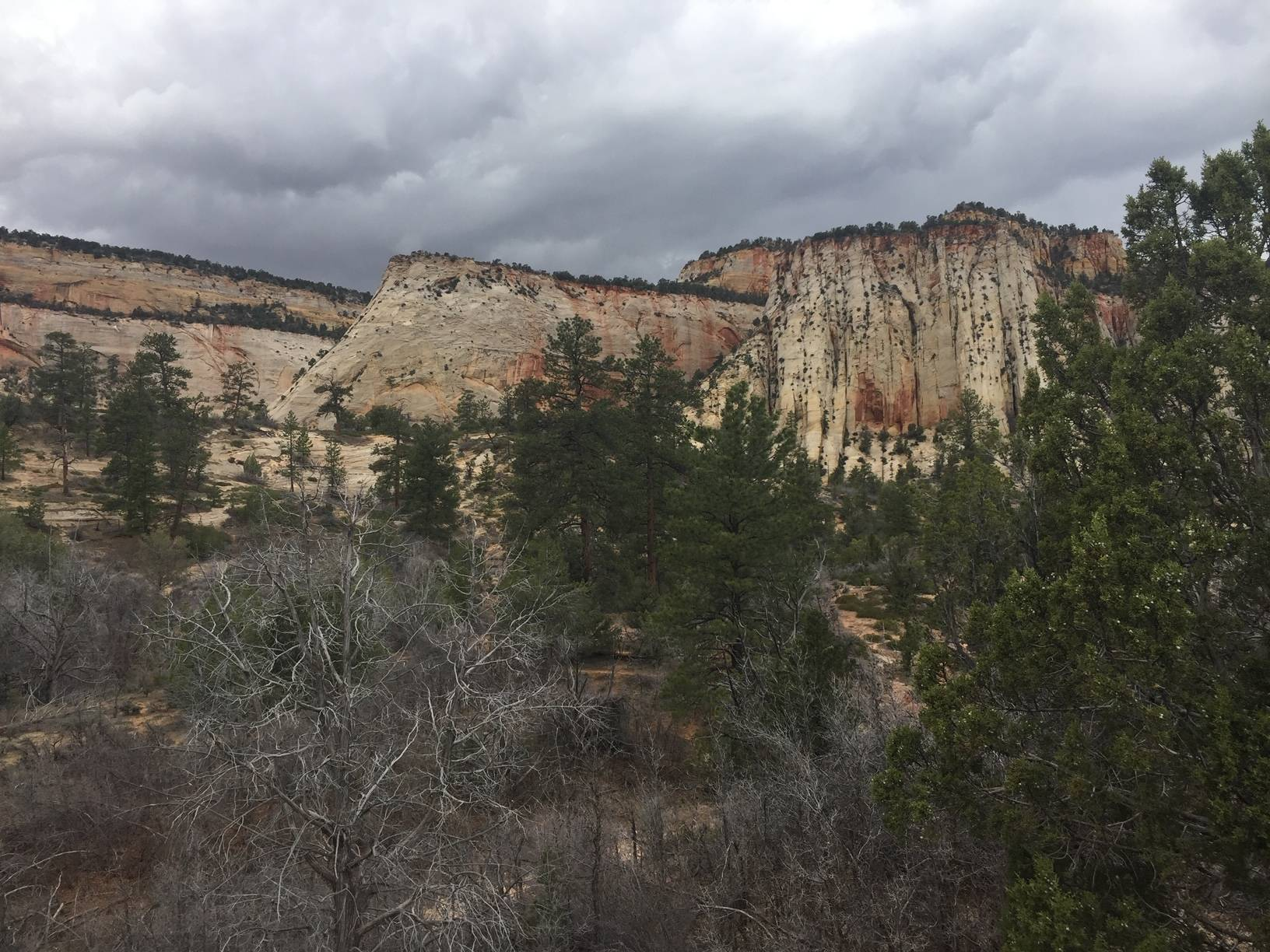 EVS PhD Geosciences pic