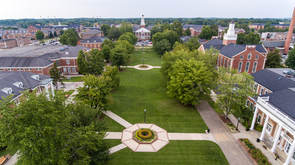View of Quad in Summer