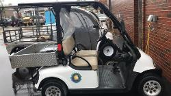 electric cart with our ecoeagles logo