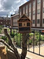 an insect hotel at the Native Plant garden