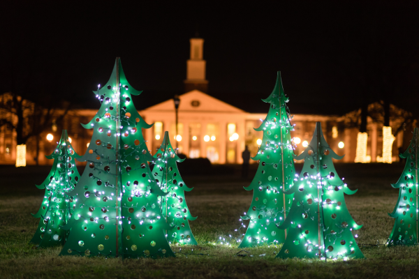 Green Christmas trees with lights. Bell Hall in the background.